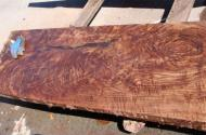 Claro Walnut (California Black Walnut). Freshly milled, not ready for sale. Five feet in length, 25 inches in width, 2.25 inches thick.